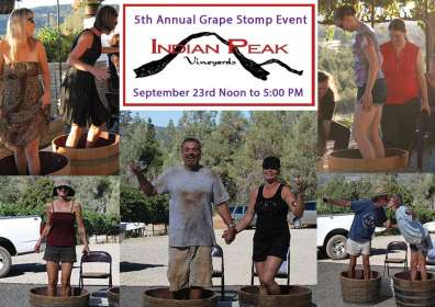 5th Annual Grape Stomp – Indian Peak Vineyards Winery