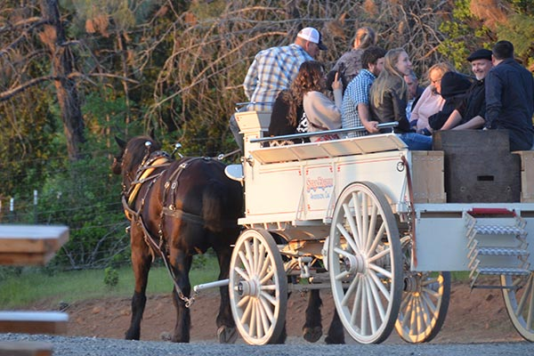 IPV-Manton-Wine-Tasting-Room-Wagon-Rides-for-Wine-Tasting-Visitors