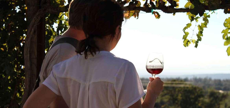 Wine Tasting Wineries near Redding, CA viewing the Manton Valley AVA at Indian Peak Vineyards, Manton, CA 96001.